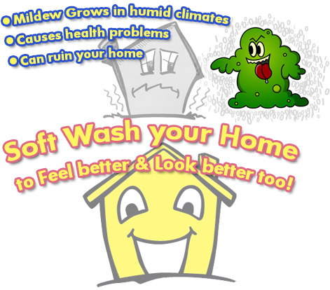 mold,mildew,clean your house,power wash house,pressure wash